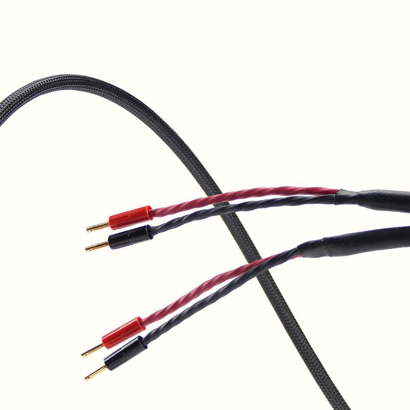 BIS – Type 2 – Haut-parleurs – Bi-Câblé